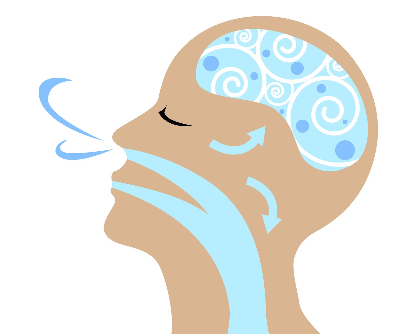 Entenda o que é a fisioterapia respiratória e como trabalhar com ela!